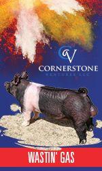 Cornerstone Ventures