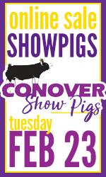 Conover Showpigs