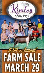 Kimley Show Pigs