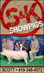S and K Showpigs