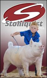 Stohlquist Showpigs