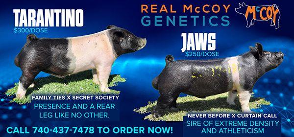 Real McCoy Genetics Sires