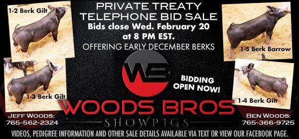 Wood Bros. Showpigs