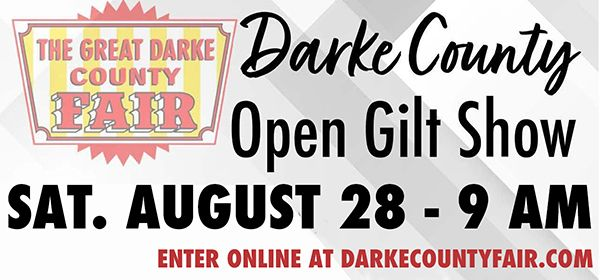 Darke Co Fair Open Gilt Show