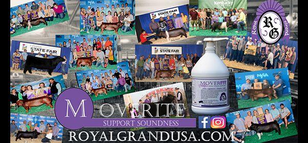 Royal Grand USA