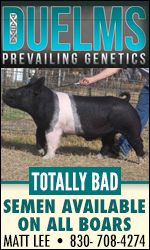 Duelms Prevailing Genetics