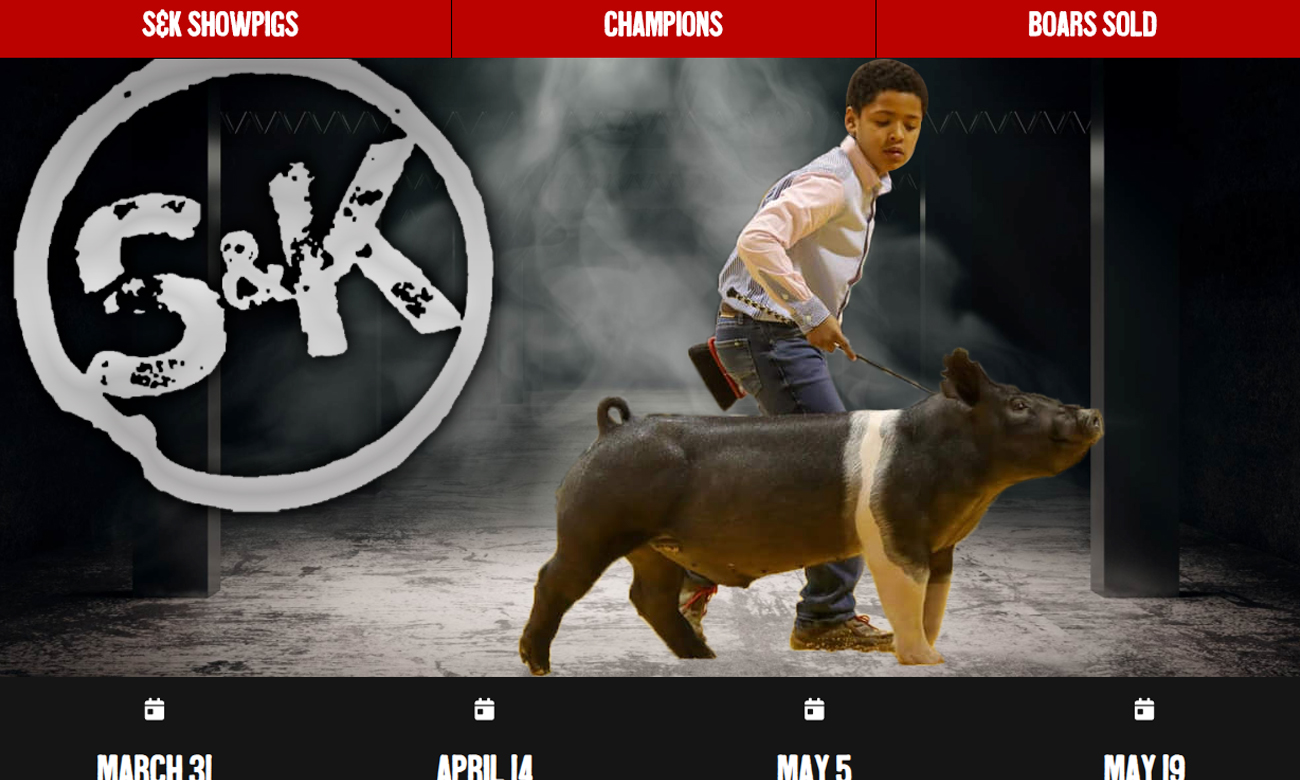 Gold Website Package Example (Bowling)