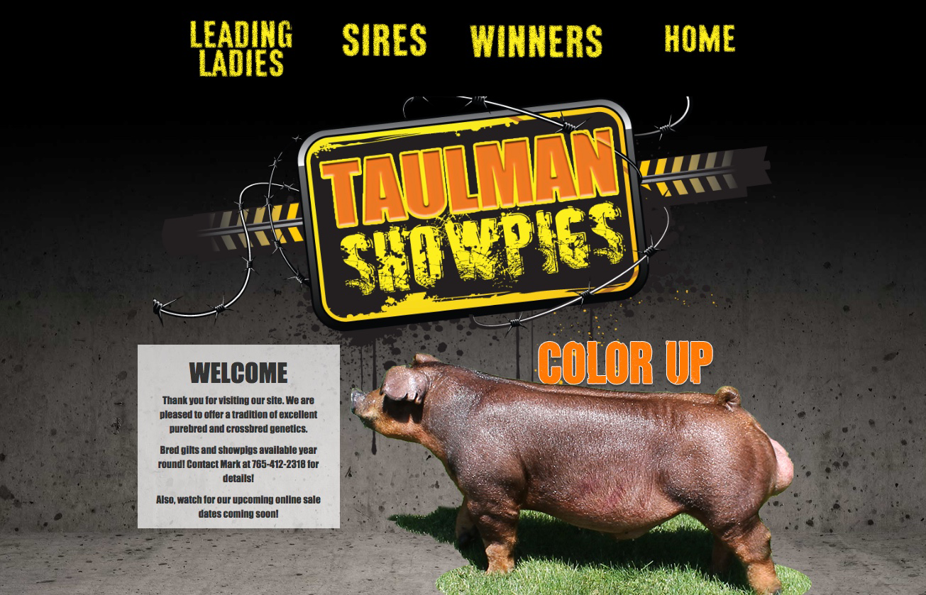 Gold Website Package Example (Taulman)
