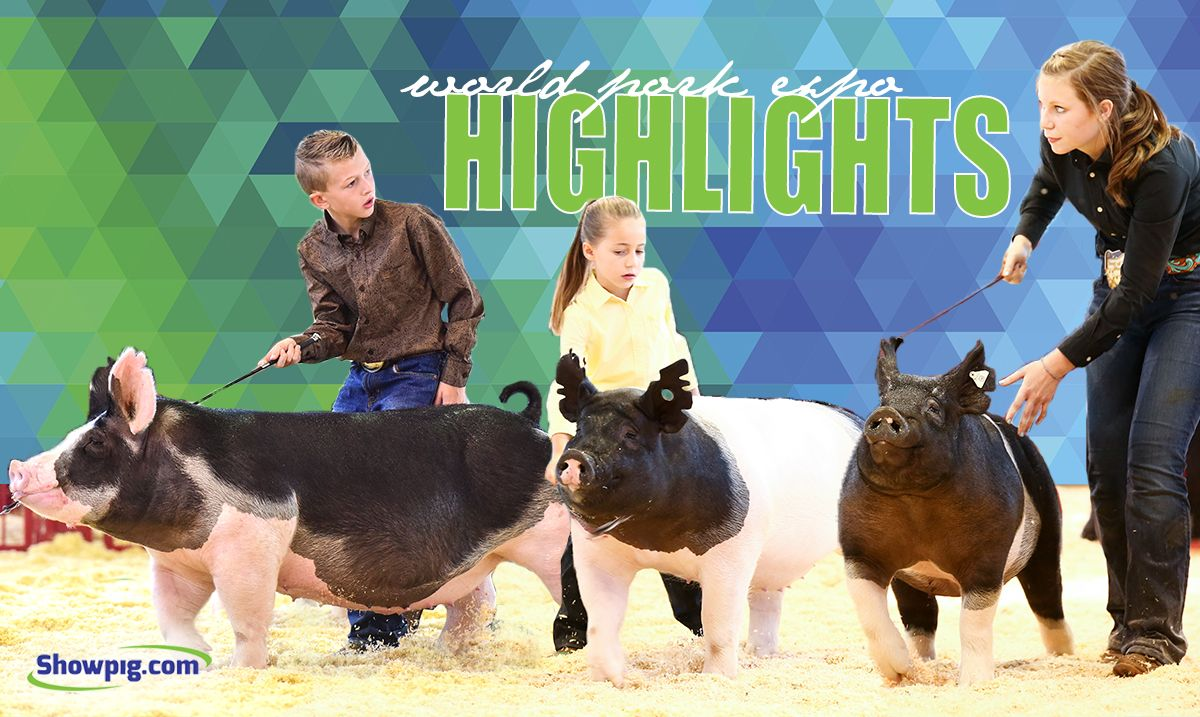 Featured image for the article titled World Pork Expo Highlights