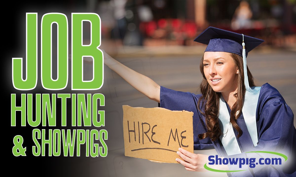 Featured image for the article titled Job Hunting & Showpigs