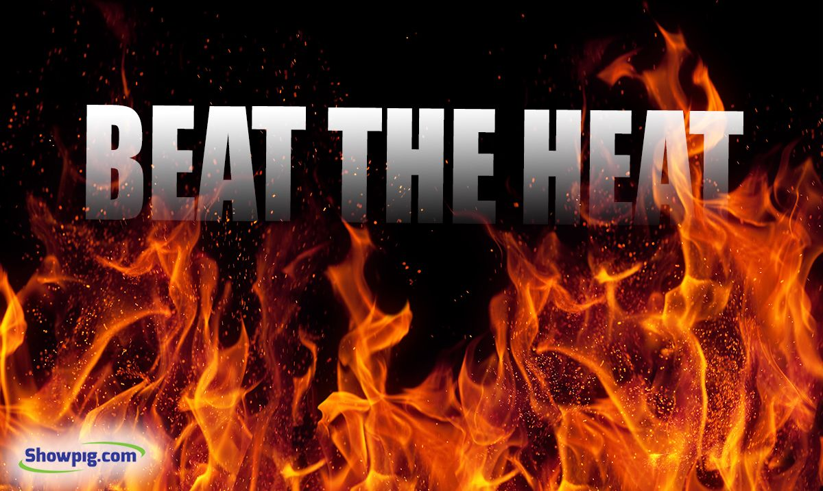 Featured image for the article titled Beat the Heat
