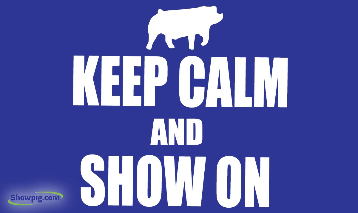 Featured image for the article titled Keep Calm and Show On