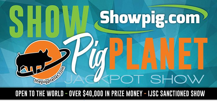 Featured image for the article titled TODAY is the last day to pre-enter the Show Pig Planet Jackpot Show
