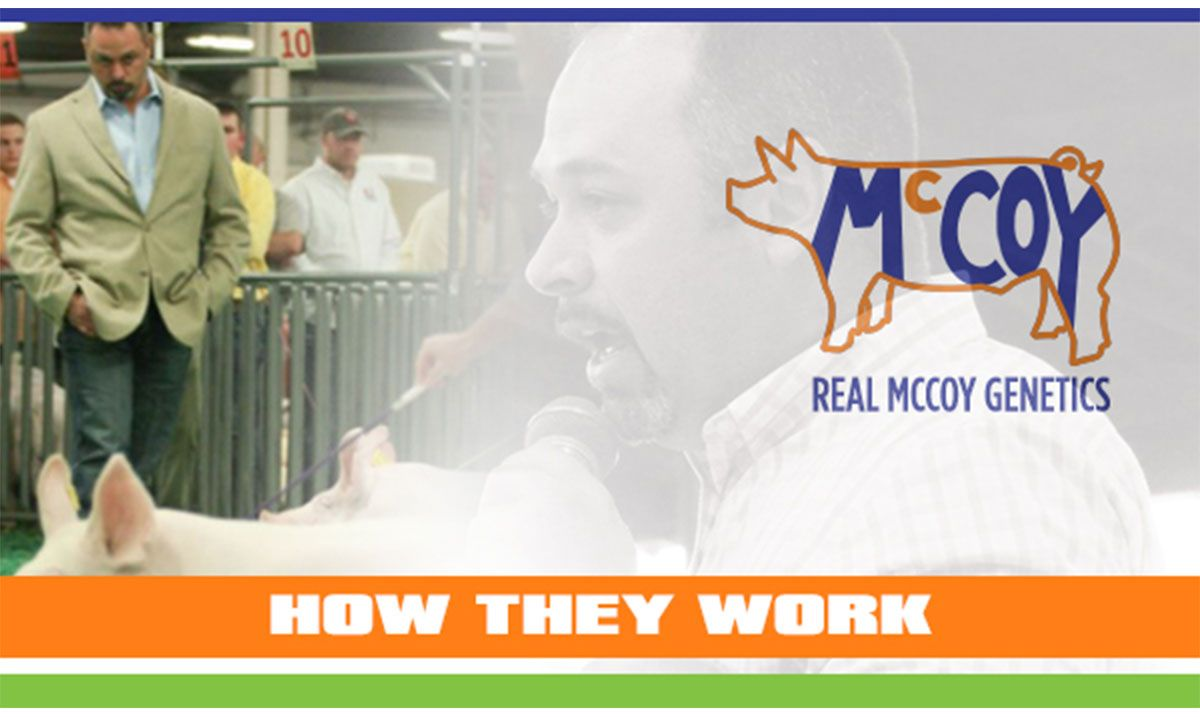 Featured image for the article titled How They Work :: Real McCoy Genetics