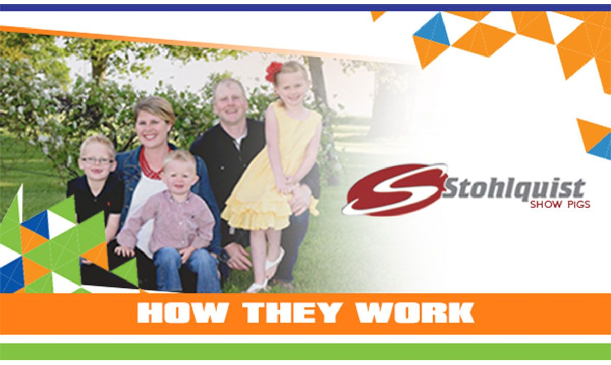 Featured image for the article titled How They Work :: Stohlquist Showpigs