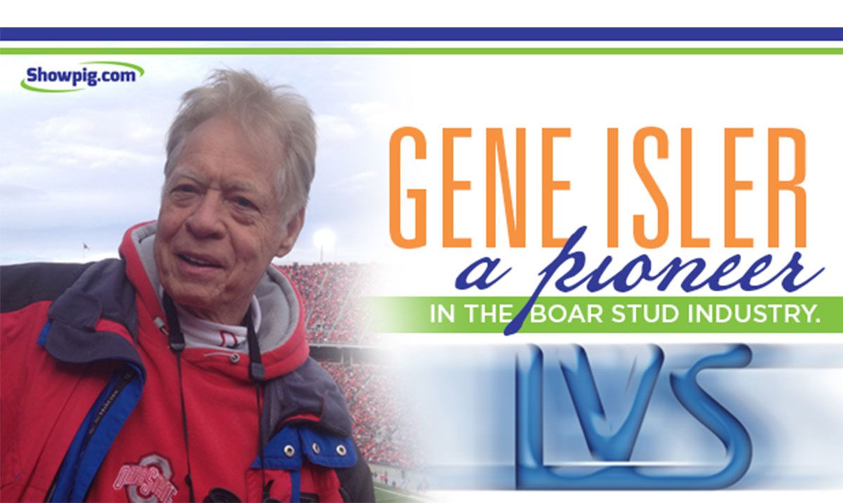 Featured image for the article titled Gene Isler : A pioineer in the boar stud industry