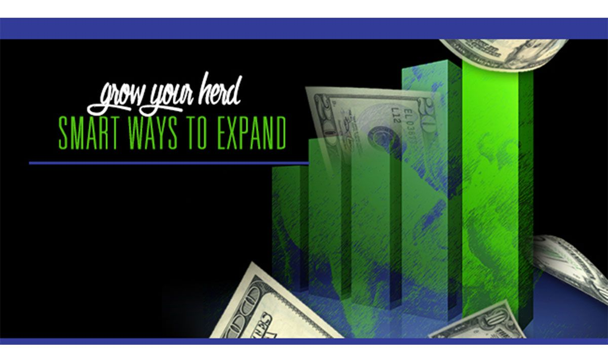 Featured image for the article titled Grow Your Herd: Smart Ways to Expand
