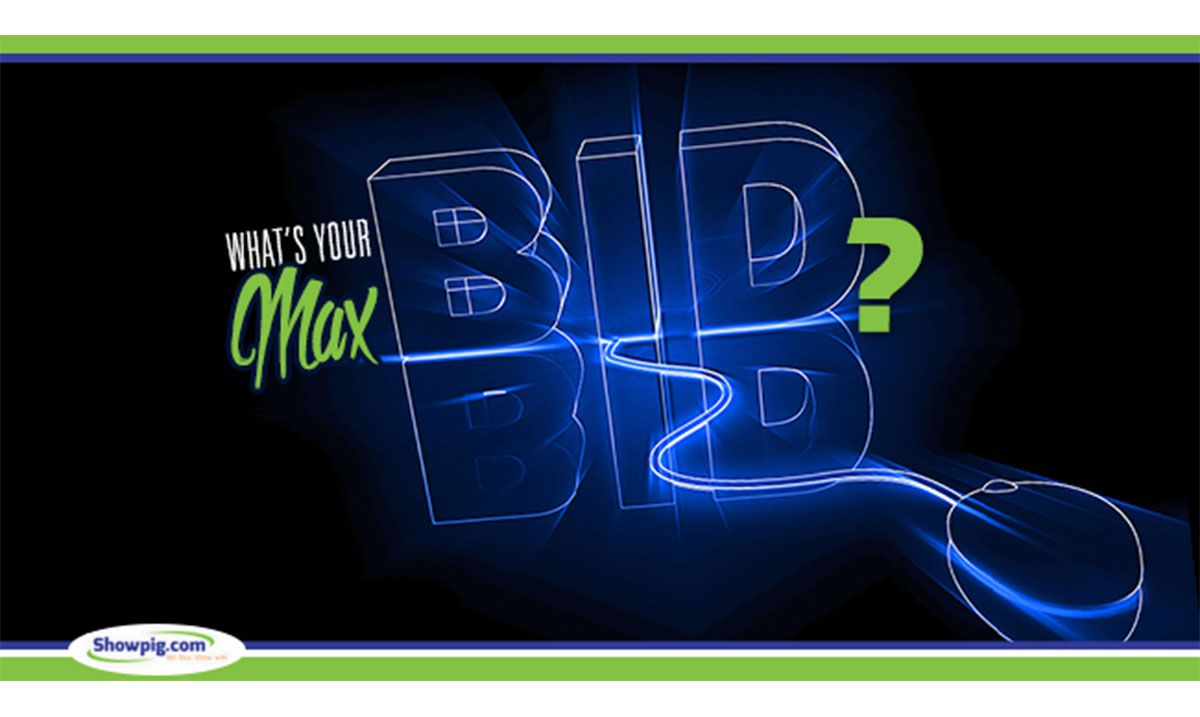 Featured image for the article titled What's Your Max Bid?