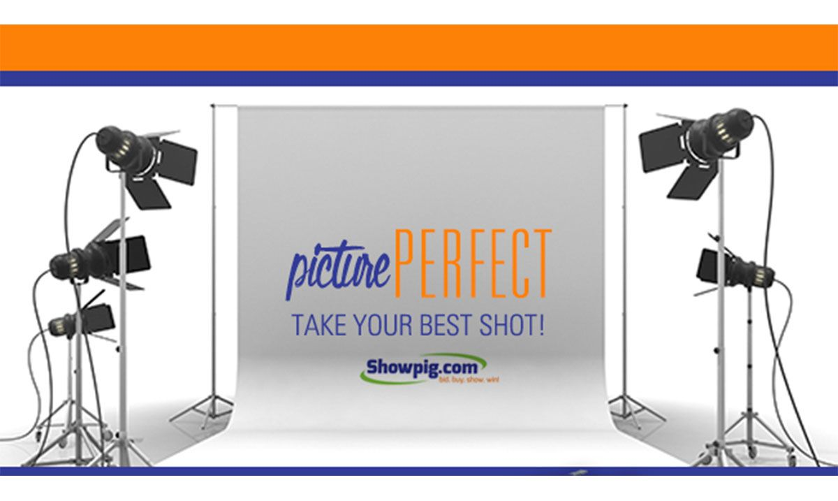 Featured image for the article titled Capturing the Perfect Shot of Your Prospects