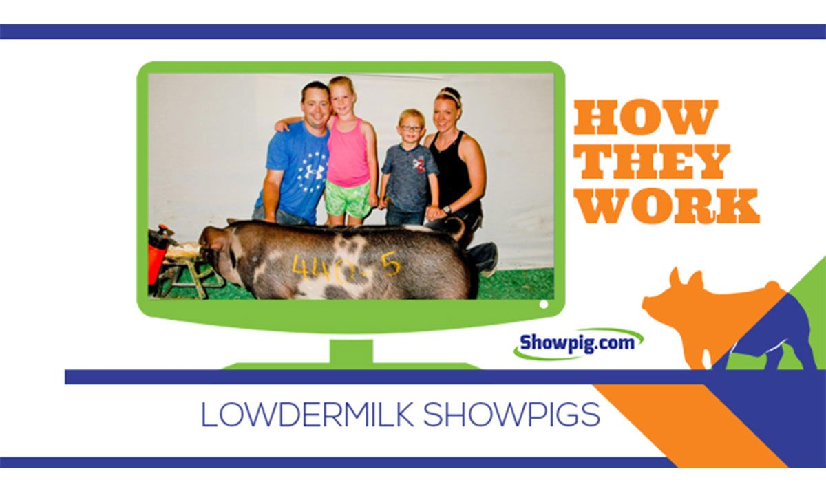 Featured image for the article titled How They Work :: Lowdermilk Showpigs