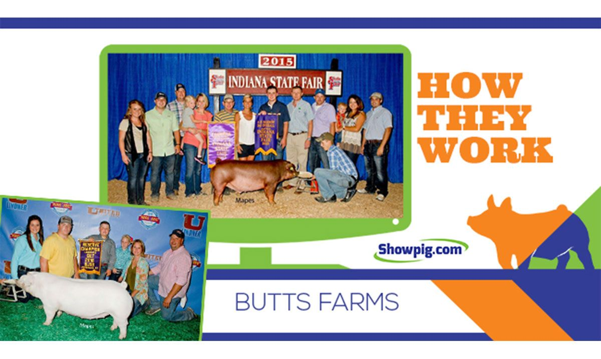 Featured image for the article titled How They Work :: Butts Farm