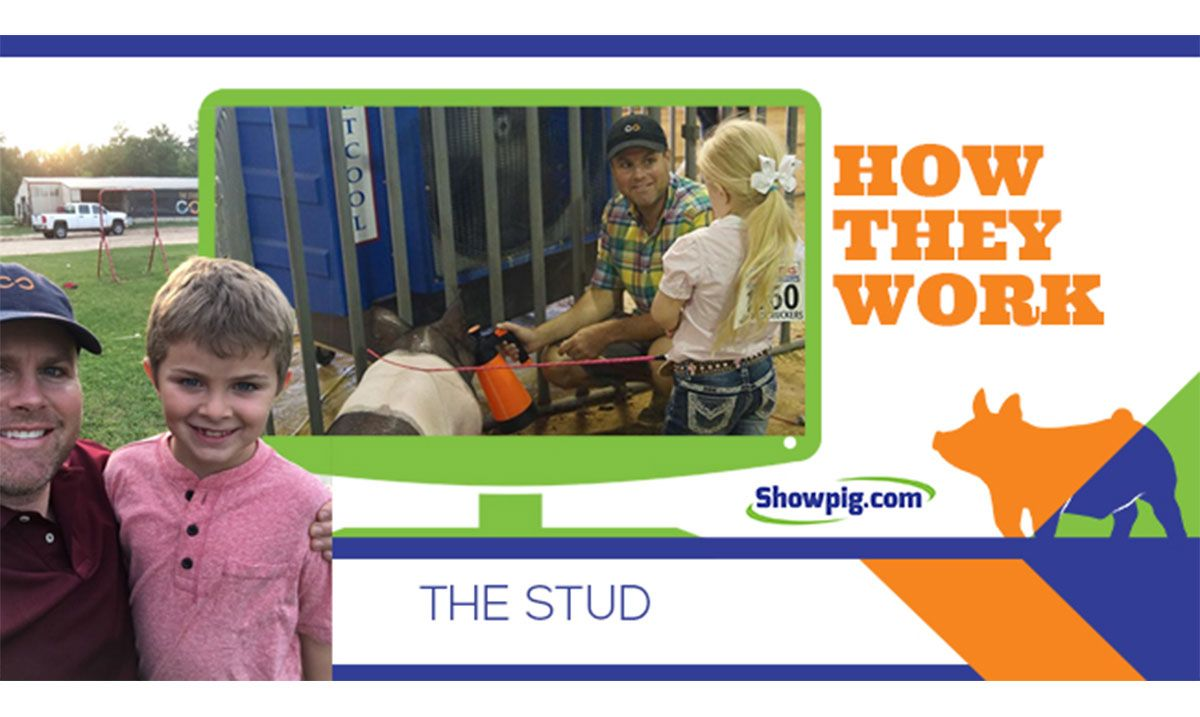 Featured image for the article titled How They Work :: The Stud