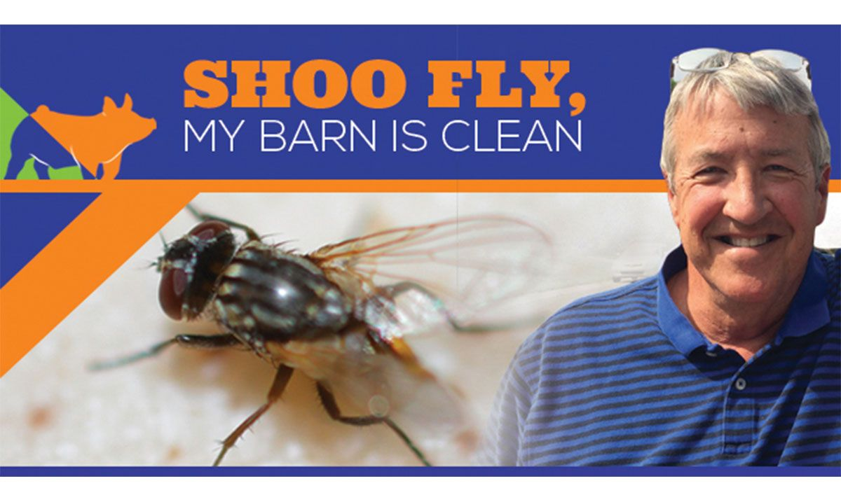 Featured image for the article titled Shoo Fly, My Barn is Clean