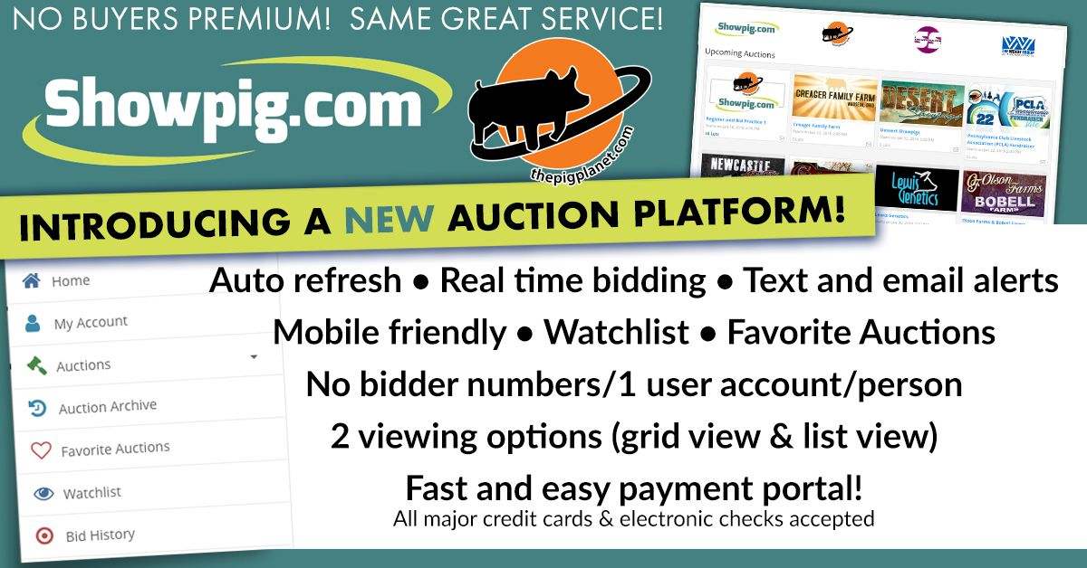 Featured image for the article titled Try Out Our New Auction Platform Today!