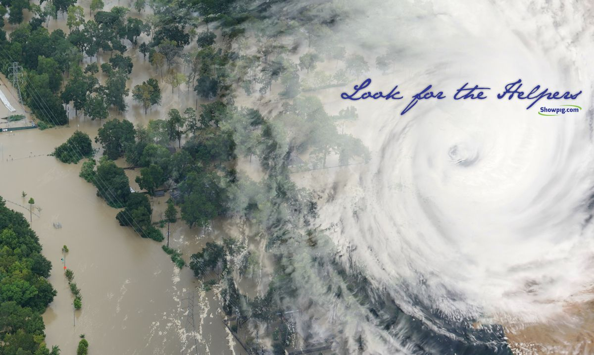 Featured image for the article titled Hurricane Harvey :: Look for the Helpers