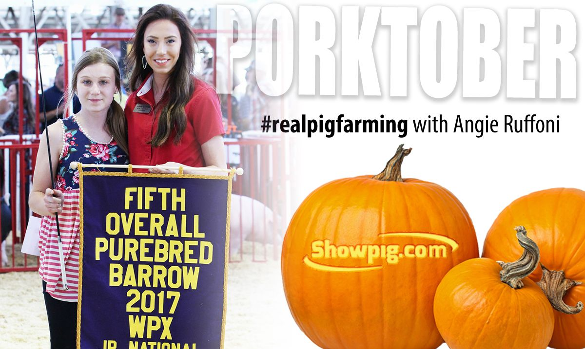 Featured image for the article titled #realpigfarming :: Angie Ruffoni – Today's showmen, tomorrow's leaders