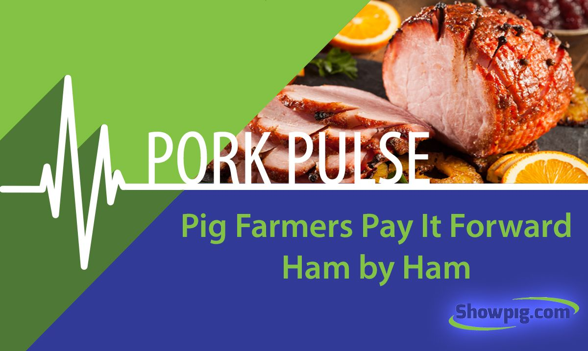 Featured image for the article titled Pig Farmers Pay It Forward Ham by Ham