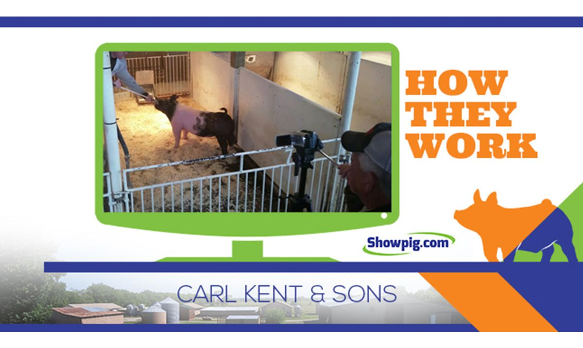 Featured image for the article titled How They Work :: Carl Kent & Sons