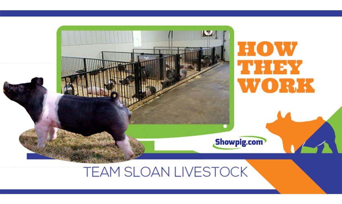 Featured image for the article titled How They Work :: Team Sloan