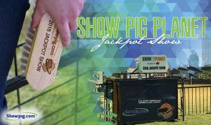 Featured image for the article titled Show Pig Planet Jackpot Show Results