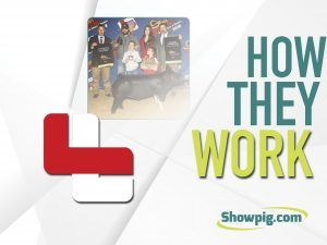 Featured image for the article titled How They Work :: Lackey Livestock