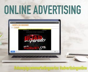 Featured image for the article titled Online Advertising :: Email Blasts, Banner Ads