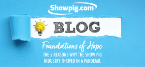 Featured image for the article titled Foundations of Hope