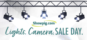 Featured image for the article titled Lights. Camera. Sale Day.